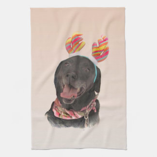 Glatt svart kökshandduk för hund för Labrador