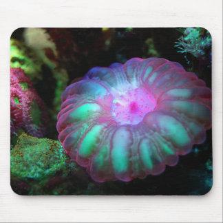 Glödande Undersea korall Musmatta