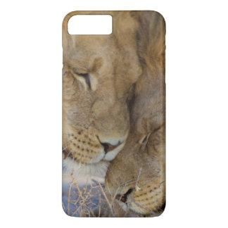 Gnuggbild för två lejon varje annan