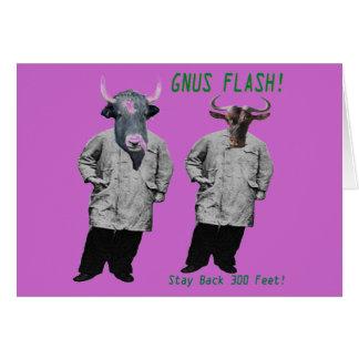 GNUS FLASH-_-Steer som är klar av de vänstra Hälsningskort