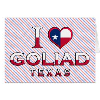 Goliad Texas Kort