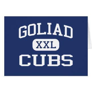 Goliad ungemellanstadium Goliad Texas Hälsningskort