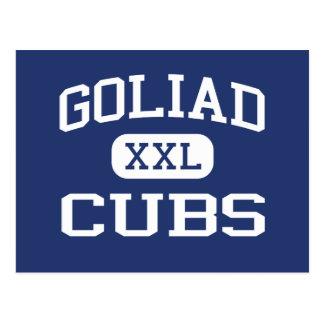 Goliad ungemellanstadium Goliad Texas Vykort