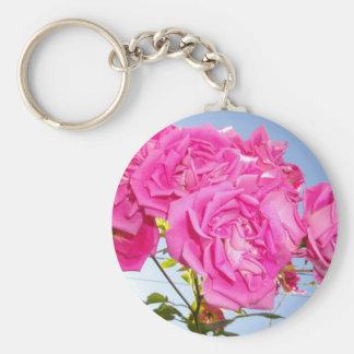 Gömma som är nedanfört petalsna rund nyckelring