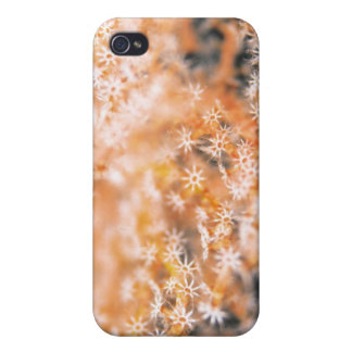 Gorgonian korall 2 iPhone 4 cover
