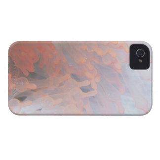 Gorgonian korall 4 Case-Mate iPhone 4 skal