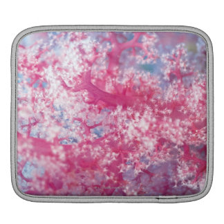 Gorgonian korall iPad sleeve