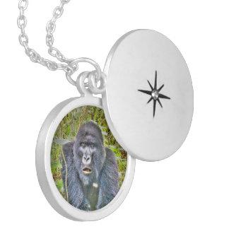 gorilla 715 berlockhalsband