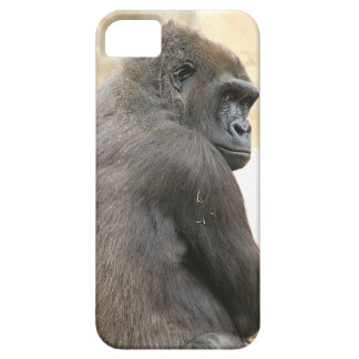Gorilla iPhone 5 Case-Mate Skal