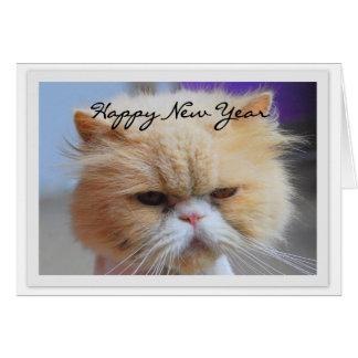 Gott nytt årperserkatthumor hälsningskort