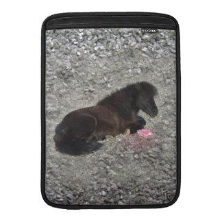 Grå färg för rosor för Minihorse Shetty Shetland MacBook Air Sleeve