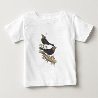 Grå färg-hövdad Blackbird Tshirts