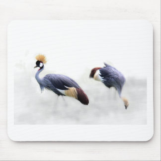 grå färg krönade fjädrar för kranfågelvingar musmatta