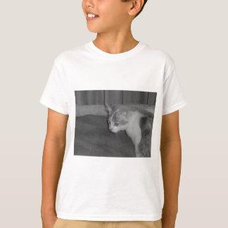 Grå färg t shirt