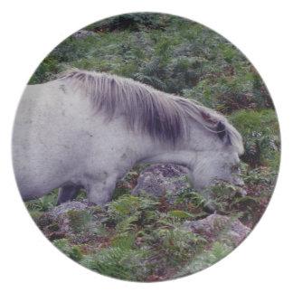 Grå färgDartmoor ponny Grazeing i bräken Tallrik
