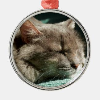 Grå färgkatt - sova i solljus julgransprydnad metall