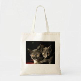 Grå toto för kattfotobudget tygkasse
