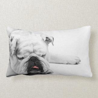 Grå vit för bulldogg som sovar dekordekorativ kudd prydnadskuddar