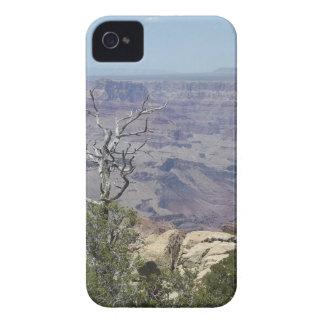 Grand Canyon Arizona iPhone 4 Case-Mate Fodral