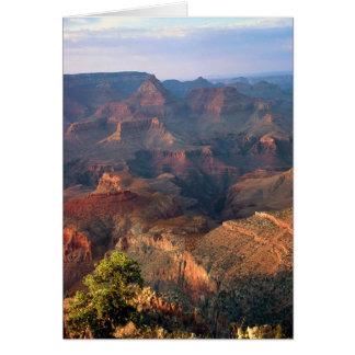 Grand Canyon på solnedgången Hälsningskort