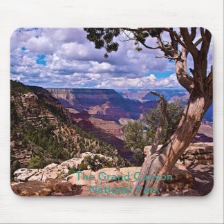 Grand Canyonnationalparkmusen vadderar Mus Matta