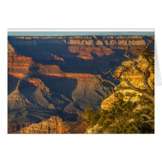 Grand Canyonsolnedgång Hälsningskort