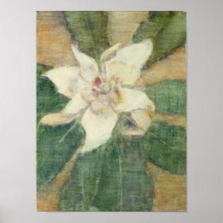 Grandiflora Magnolia Poster