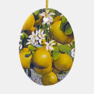 Grapefrukt & blommar i Florida Julgransprydnad Keramik