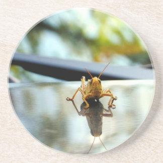 gräshoppabrytning underlägg sandsten
