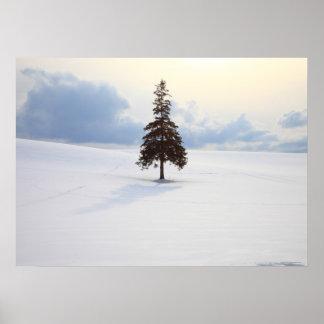 Grästräd, Hokkaido Poster