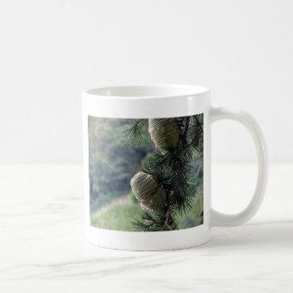 Grästrädgren som är genomblöt med kåda kaffemugg