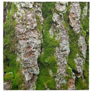 Grästrädskäll med Moss Tygservett