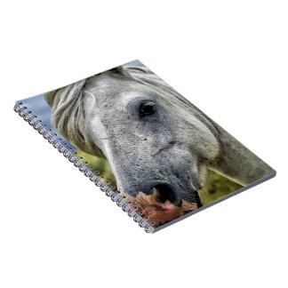 Grått hästansikte anteckningsbok