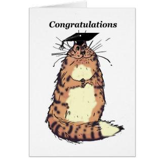 Grattis på din studenten tabby katt kort