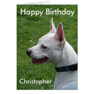 Grattis på födelsedagen för Staffordshire Hälsningskort