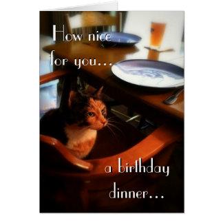 Grattis på födelsedagen från reserverad katt 2 hälsningskort