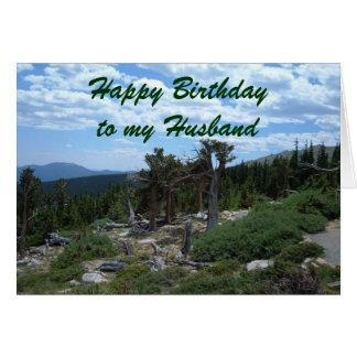 Grattis på födelsedagen till min make hälsningskort