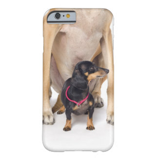 Great dane- och taxporträtt barely there iPhone 6 skal