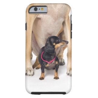 Great dane- och taxporträtt tough iPhone 6 case