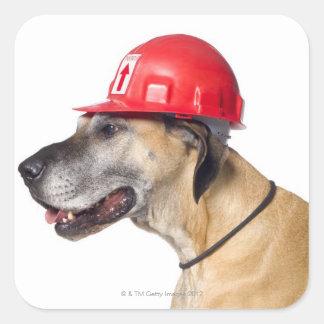 Great dane som ha på sig en röd konstruktionshjälm fyrkantigt klistermärke