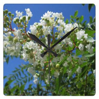 Gren för kräppmyrtenträd fyrkantig klocka