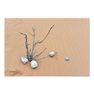grenar för träd för ikebana för natur för sanddyns fotografiska tryck