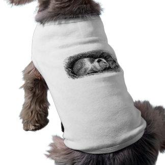 Grisar för illustration för vintage1800sförsökskan långärmad hundtöja