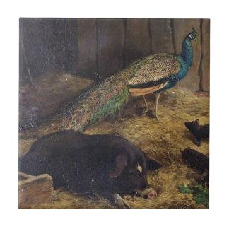 Grisar och påfågel av den Charles Burton Liten Kakelplatta