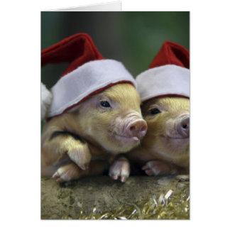 Grisjultomten - julgris - tre grisar OBS kort