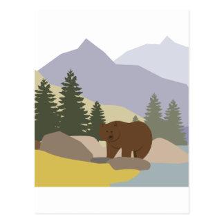 Grizzly Alaska Vykort