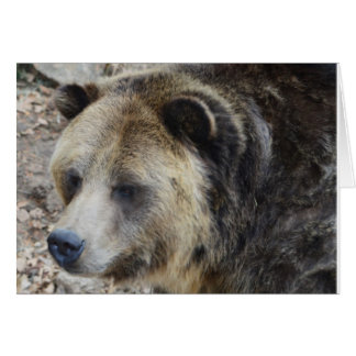 Grizzly III OBS Kort
