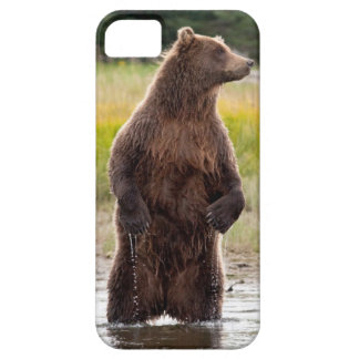 Grizzly iPhone 5 Fodral
