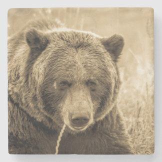 Grizzly Underlägg Sten