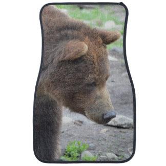 Grizzlybjörn Bilmatta